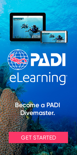 Divemaster eLearning