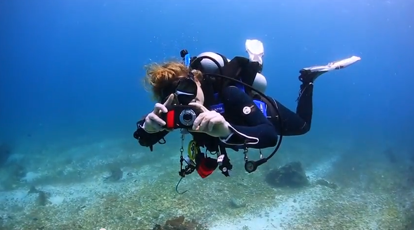 Underwater Photo/video Contest 2017
