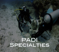 PADI Specialties