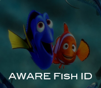 AWARE Fish ID